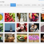 Unite Gallery Wordpress » Tiles Grid