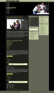 Free WordPress šablona – téma obchod