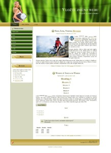 šablona wordpress - zdraví